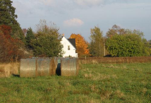 House Through A Hayfield